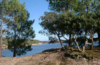 Le lac de Port d'Albret