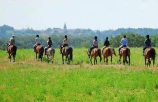 Classe découverte équitation