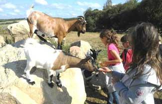 La ferme à Kergaher