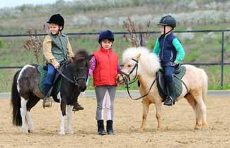 Les Brigantins - Equitation