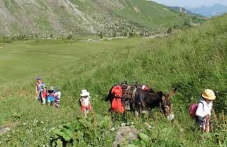 Randonnée avec âne