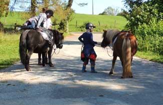 Les Fauvettes - Les poneys