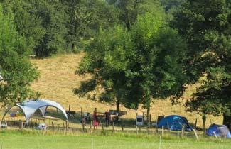Bonzaï - Campement durable