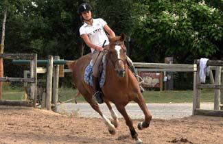 Sports Elite Jeunes - Stage d'équitation
