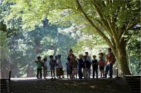 nicolas-hulot-branfere-pedagogie